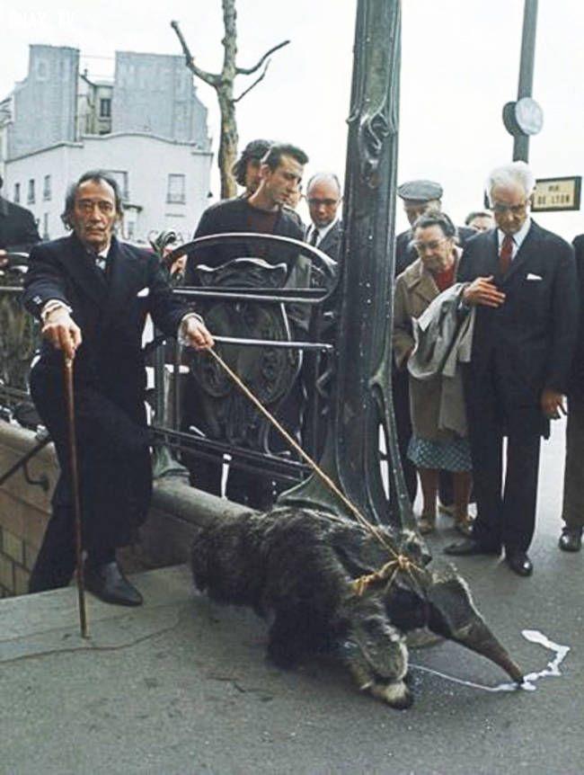 Salvador Dali paseando a su mascota
